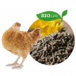 Hühner Bio Line