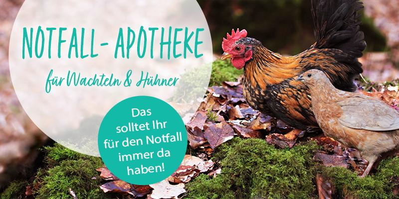 Notfallapotheke für Hühner