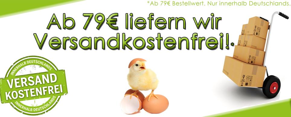 Versandkostenfrei im Hühner Shop